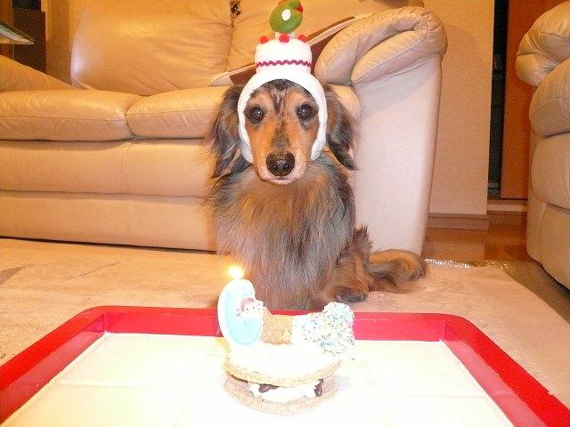 ぼく、 6歳 のお誕生日!